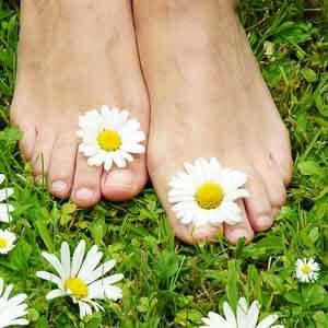 healthy feets, gesunde Füße auf Blumenwiese, barfuß, Margarit